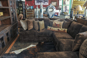 Western Decorations and Sofa